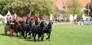 V národním hřebčínu v Kladrubech se uskuteční tradiční Hubertova jízda