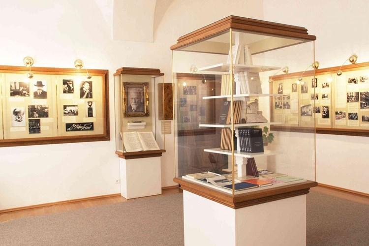 Muzeum v Příboře nabízí expozici zaměřenou na zdejšího rodáka Sigmunda Freuda
