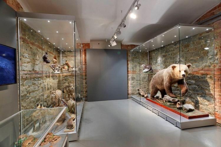 Expozice Slezsko v Historické výstavní budově přibližuje přírodní podmínky a biodiverzitu zdejšího regionu