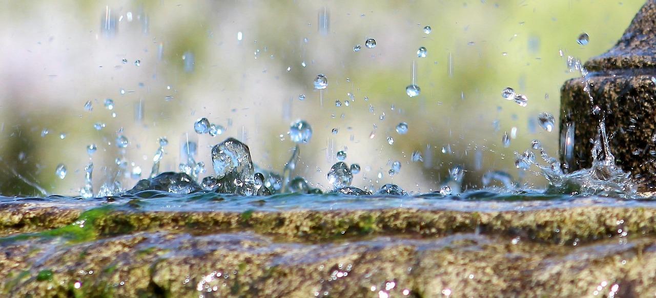 Žáci waldorfské školy se učí hospodařit s dešťovou vodou, škola vybuduje podzemní nádrž