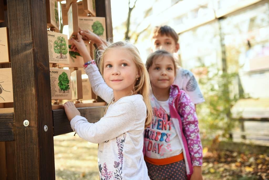V Hradci Králové vzniká první dendrologická mateřská škola