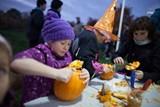 Kam vyrazit na Halloween a dlabání dýní? Určitě do trojské botanické zahrady