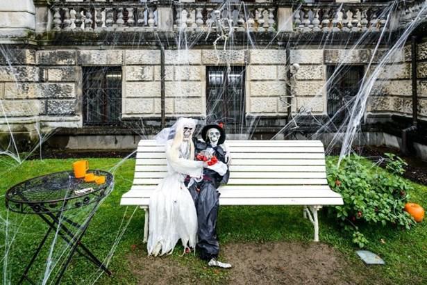 Popis: Halloween ve zlínské zoologické zahradě Lešná.