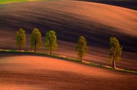 Výstava fotografií zachycuje nádhernou krajinu jižní Moravy
