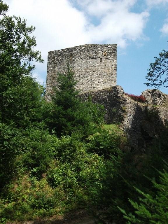 Rozhledna na hradu Český Šternberk.