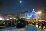 Před jarmekem se rozsvítí vánoční strom města