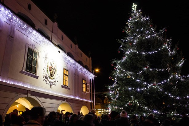 Popis: Vánoční strom v Lázních Bohdanči.