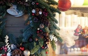 Hradec Králové tradičně ozdobí tři vánoční stromy, rozsvítí se o první adventní neděli