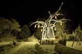 Zoo Dvůr Králové zve na vánoční prohlídky. Uvidíte při nich i některé antilopy