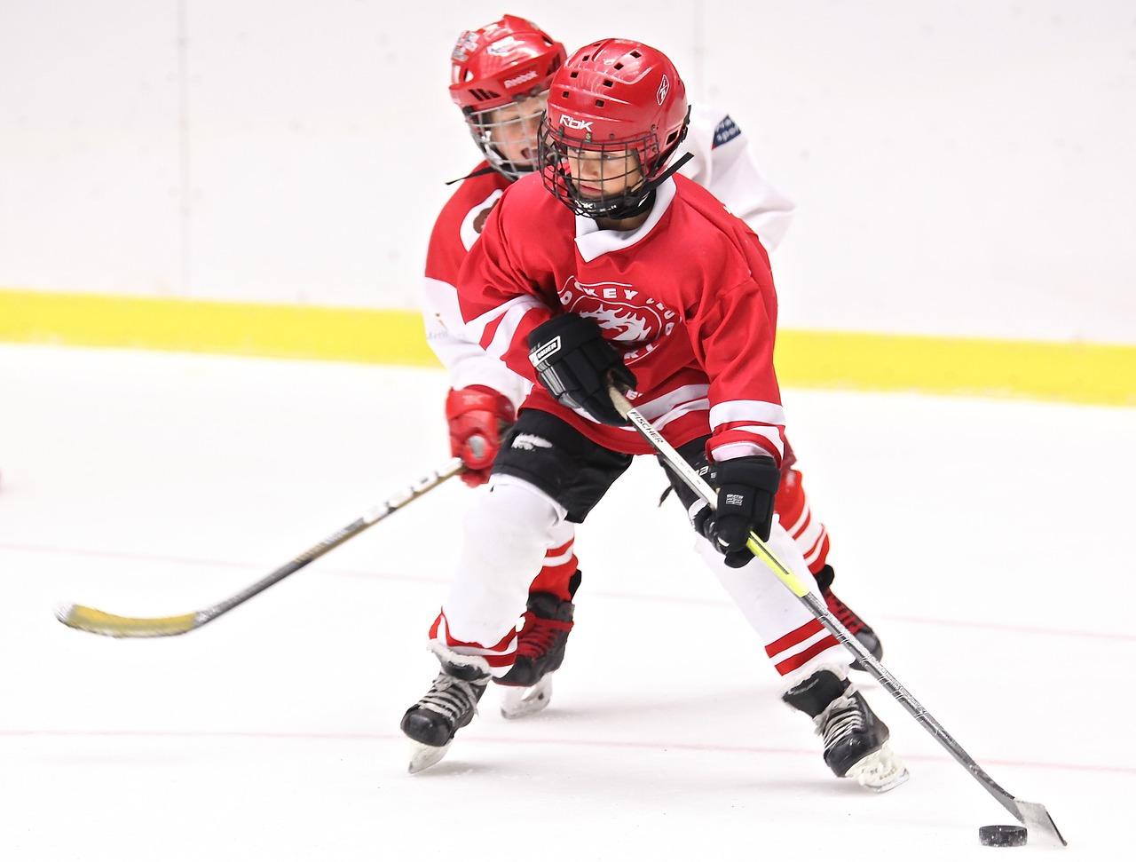Hokej je nejrychlejší hrou na světě. Děti mají mnoho idolů v zámoří