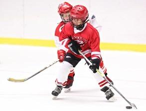 Šestý Týden hokeje se blíží. Zapojí se do něj rekordních 149 klubů