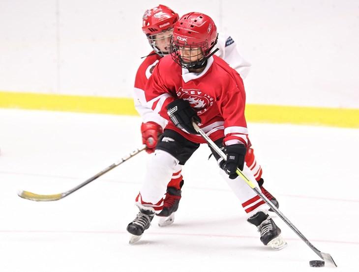 7036ad685 Hokej je nejrychlejší hrou na světě. Děti mají mnoho idolů v zámoří ...