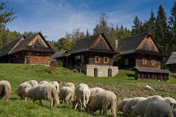Popis: Valašské muzeum v přírodě.