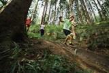 Běhej lesy na Bílé jsou beznadějně zaplněny, hlásit se ale mohou ještě rodiny s dětmi