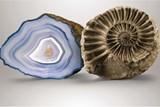 Muzeum vystavuje zkameněliny a polodrahokamy z okolí Semil