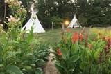 V trojské botanické zahradě návštěvníci uvidí mexickou okurku i superpotravinu quinou