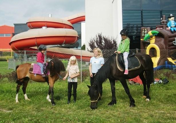 Popis: V sobotu se děti budou moct povozit na koni.