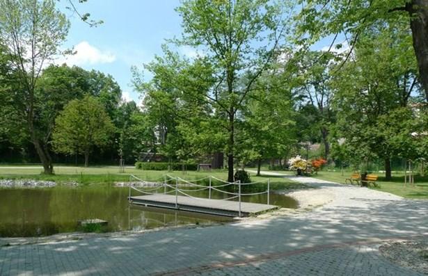 Popis: Městský park Kaplice.