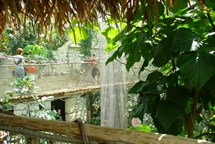ZOO Zlín slaví 70 let od svého otevření pro veřejnost
