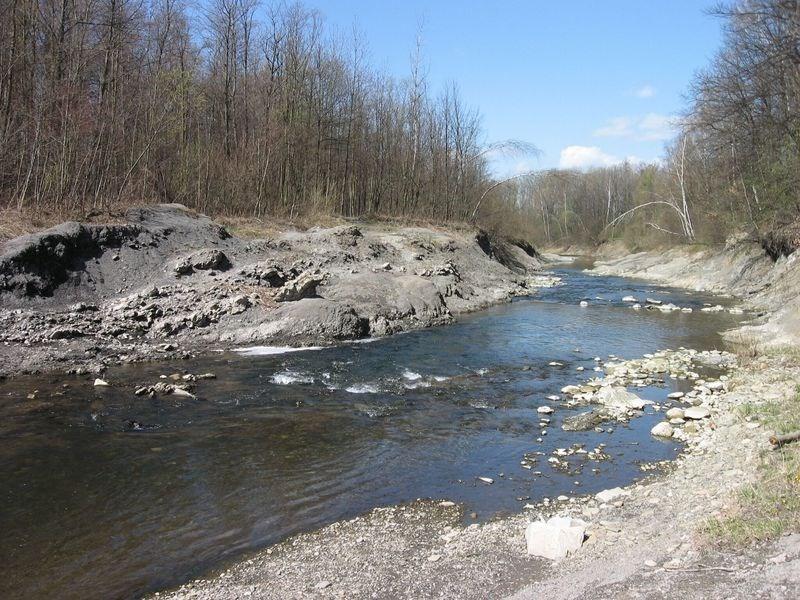 Popis: Řeka Morávka.
