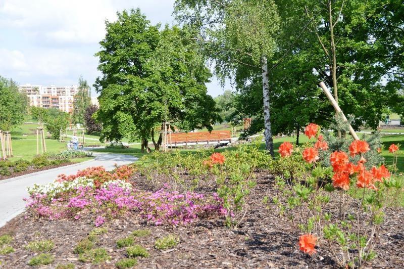 Popis: Arboretum ve Frýdku-Místku.