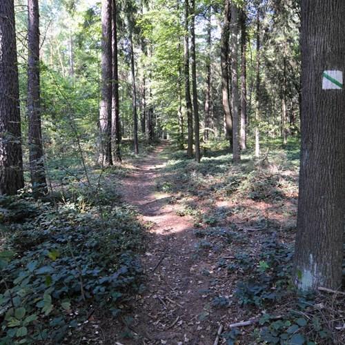 Naučná stezka Frýdecký les