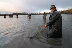 Rybáři na Kroměřížsku uspořádají na podzim pět výlovů rybníků