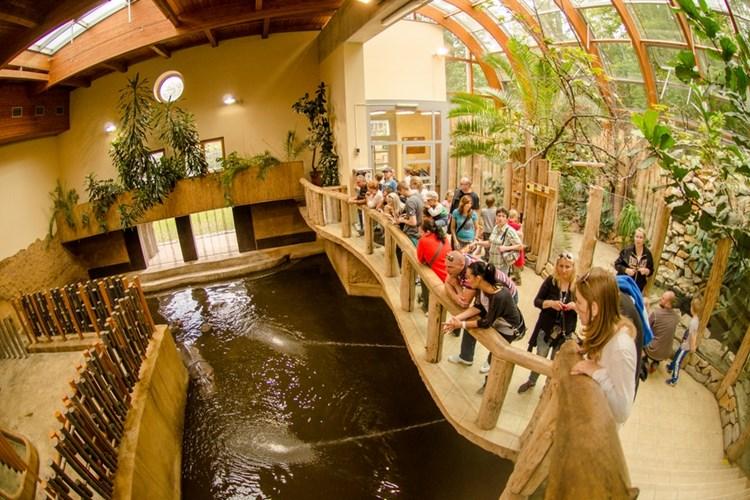 Druhá největší zoo v Česku nabízí zábavu, relaxaci i poznání