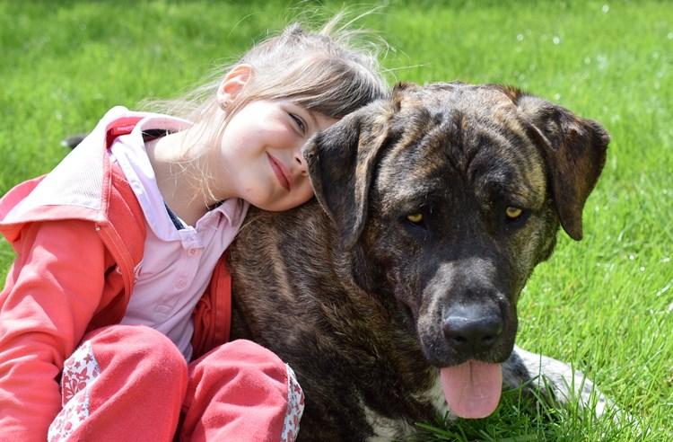 Canisterapie: léčba psí láskou pomáhá dětem
