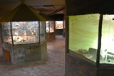 V chomutovském zooparku zazimovali plazy. Ti teď nabírají sílu na začátek jara