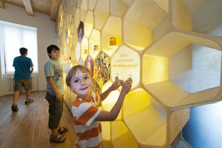 Včelí svět nabízí možnost projít se velkým úlem nebo si pustit zvuky úlu