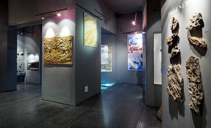 V turnovském muzeu se můžete vydat po stopách dávných živočichů z minulých geologických dob