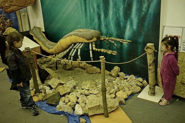 Výstava umožňuje postavit se tváří tvář šavlozubému tygrovi či jeskynnímu lvovi