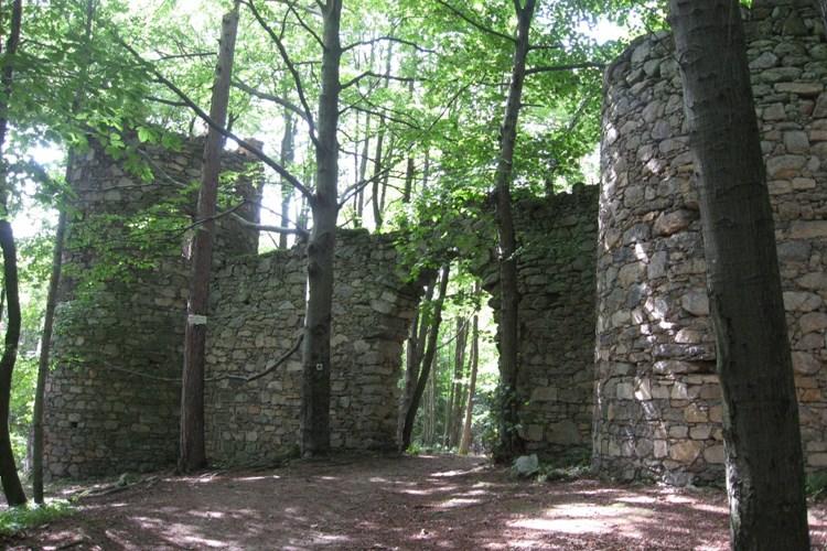 Vydejte se do lesoparku Prašivice, kde se vaše děti vyřádí na želvě, drakovi či žábě