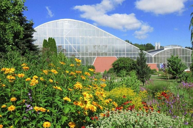 V teplické botanické zahradě můžete obdivovat padesátileté kaktusy a jiné sukulenty