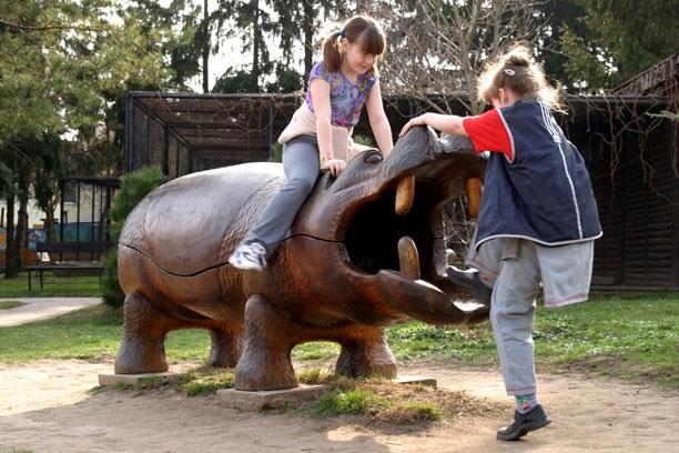 Ve vyškovském zooparku můžete krmit nebo pohladit kůzlátka či jehňátka