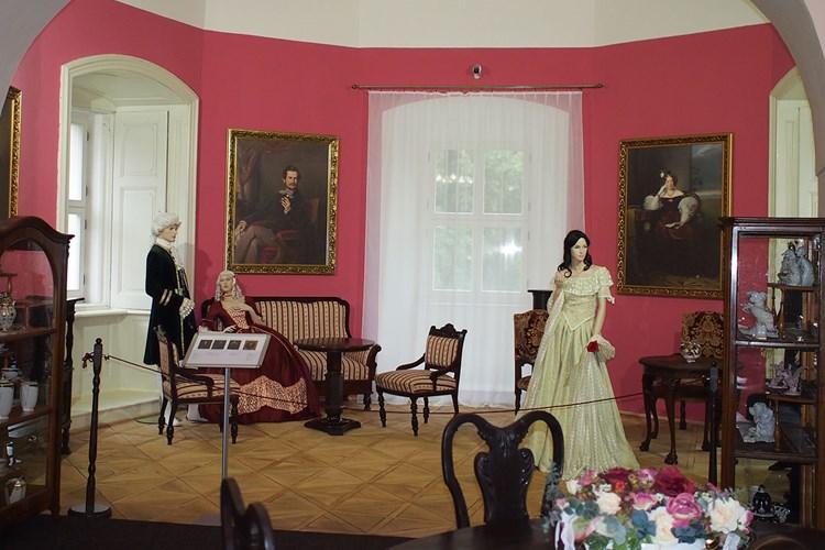 Muzeum v Sokolově přibližuje historii rodu Nostitzů. Pořádají se tady i krátkodobé výstavy