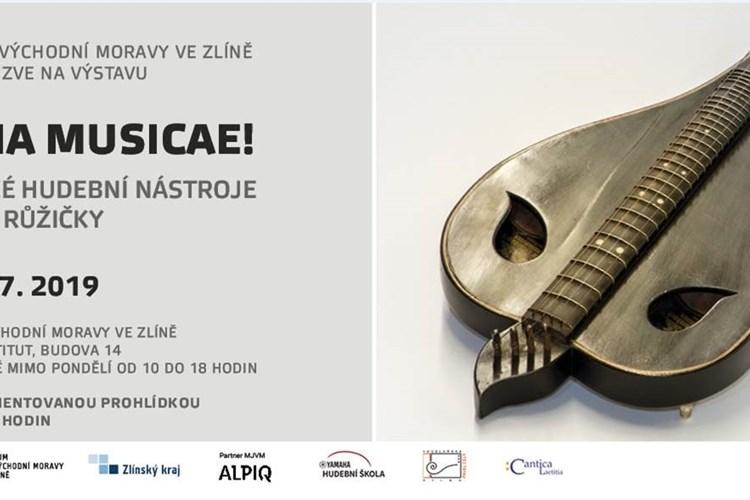 Zlínské muzeum představí historické hudební nástroje